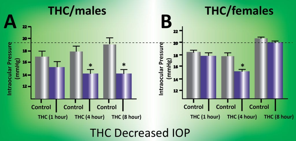 THC Decrease IOP from a  Gill Center for Biomolecular Science study.